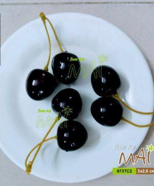 chùm 2 cherry đen 673TC2